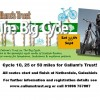 big cycle flyer2013 newdate copy